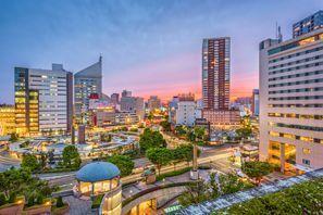 Hamamatsu (Shizuoka)