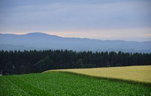 Memanbetsu (Hokkaido)