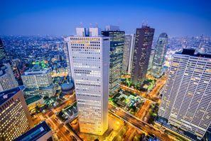 Shinjuku-ku (Tokyo)